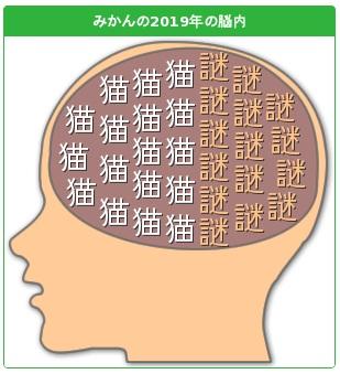 みかんの2019年の脳内
