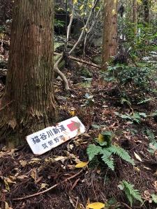 181206_03猫谷新道
