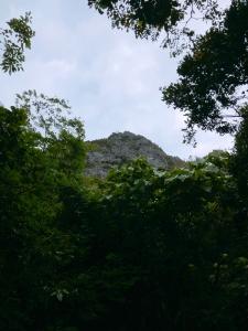 190125_23山頂を望む