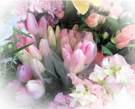 0115春の香り