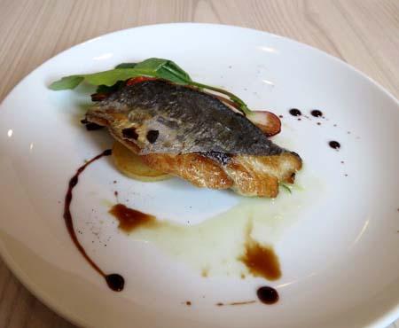 0120お魚