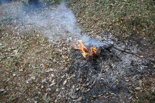 石岡市 自然 八郷 焚火