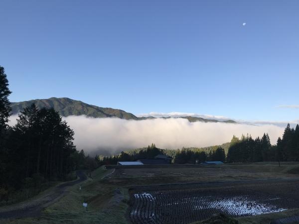 181028-今朝の雲海
