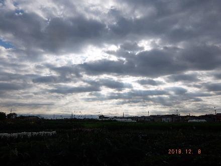2018_12080006.jpg