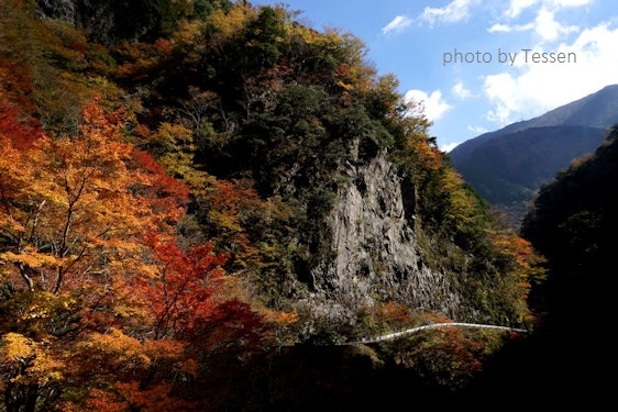 DSC01549kisawa.jpg