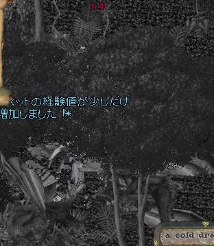 WS004574.jpg