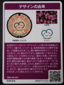 松茂A (2)