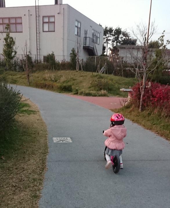 寒くても公園♪5(20181229).JPG
