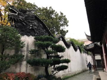 2018-12Shanghai (11)