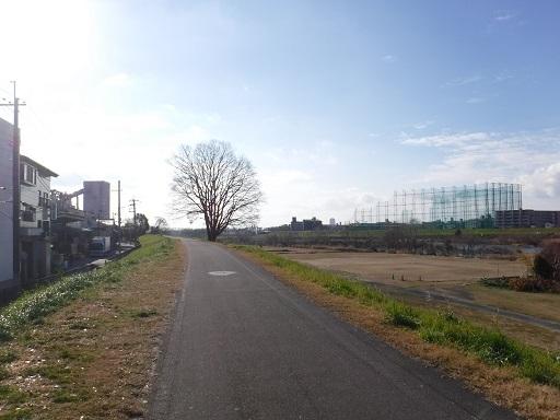 DSCF1319.jpg