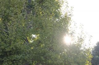 181110-(74).jpg