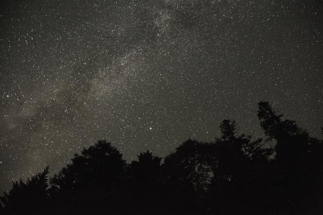 star_naight.jpg