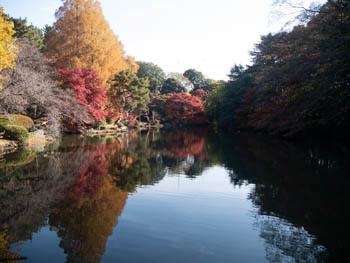 新宿御苑20181204_2