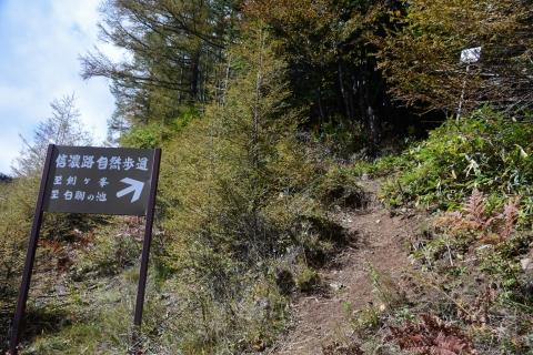 白駒池トレッキング6blog