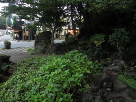 愛染院跡の熔岩塚