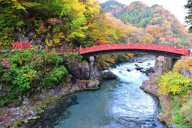 20181103神橋