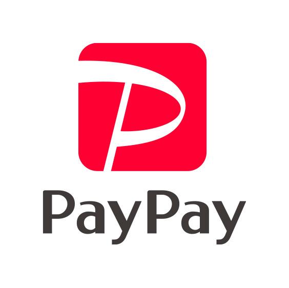 PayPay_logo_2.jpg