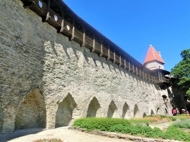 防衛 城壁 守る