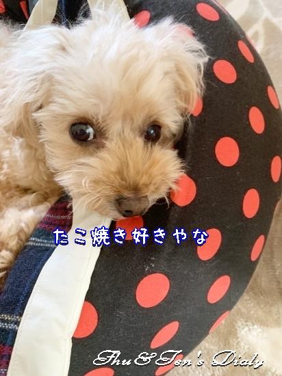 013bIMG_0998.jpg