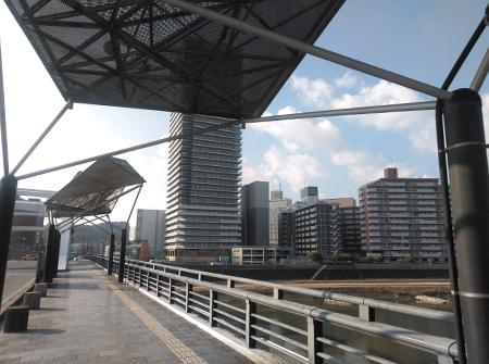 白川(熊本市内)