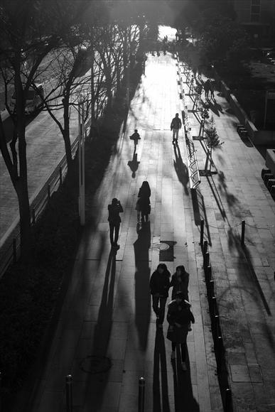 ふゆの歩道-1_R