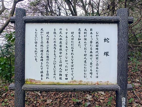 jazuka_tk11.jpg