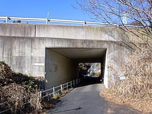sukegawa_s5.jpg