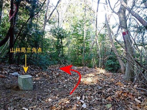sukegawa_tk1.jpg