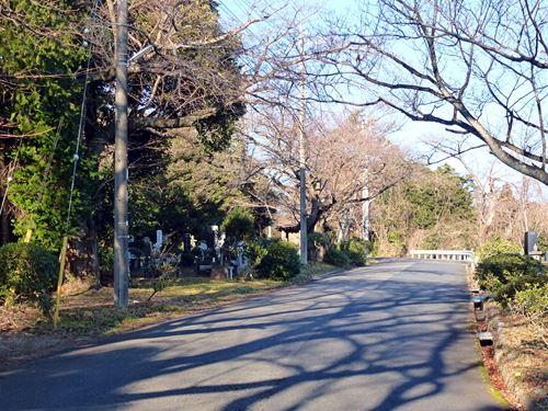 sukegawayama8.jpg