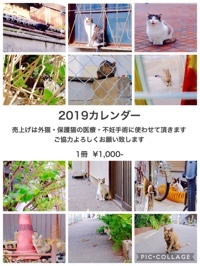 fc2blog_20181105023342aec.jpg