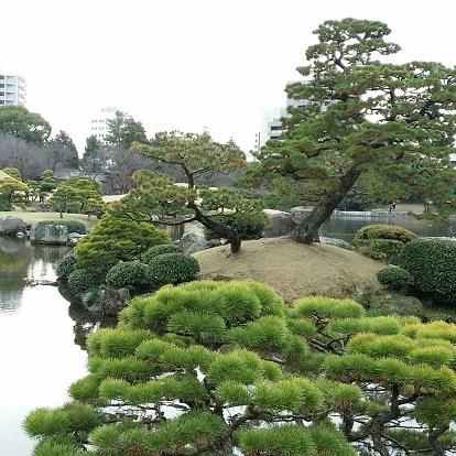 kumamoto31.jpg