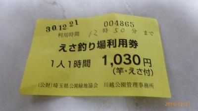 P1150485.jpg