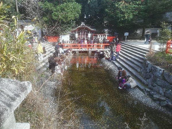 shimogamo-kyoto-107.jpg