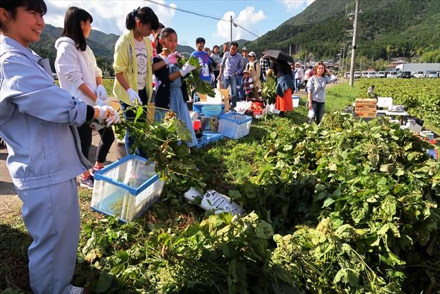 181014-黒枝豆収穫祭-01-S