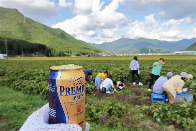 181014-黒枝豆収穫祭-06-S