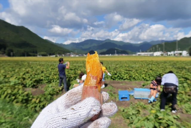 181014-黒枝豆収穫祭-07-S