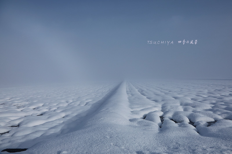 塩沢 雪 6