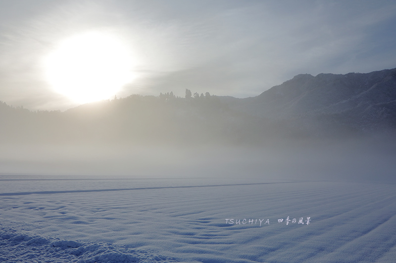 塩沢 雪 12