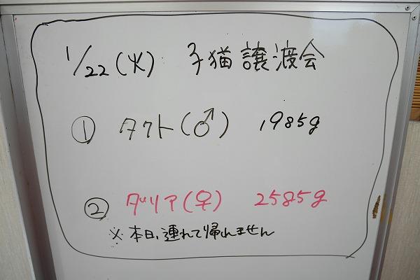 20190122 譲渡会_190123_0027