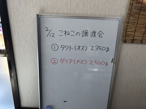 S__33906721.jpg