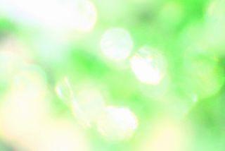 864a3c9fd8b005295b7b6072da52ce69_s.jpg