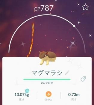 2018 1112 ポケモン2