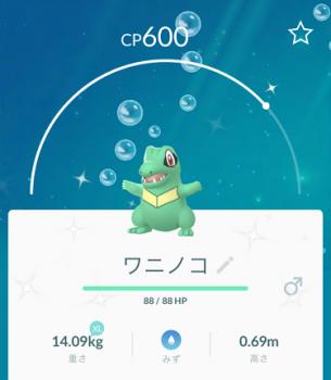 2019 0113 ポケモン
