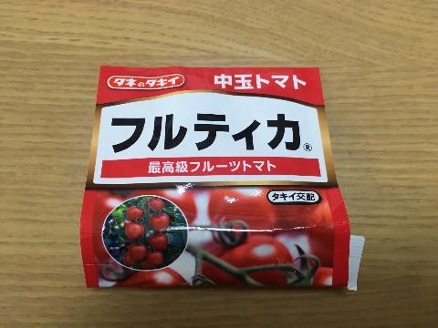 20190203 トマト育苗①
