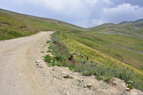 20180729_170811_KhaburabotPass_PamirHighway_Tajikistan.jpg