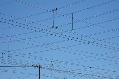 電線マン1