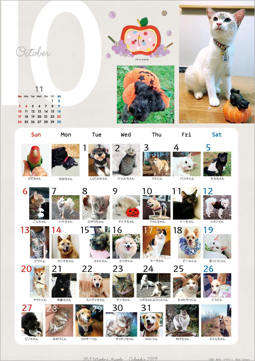 2019_365wankonyanko_calendarh-sa10.jpg