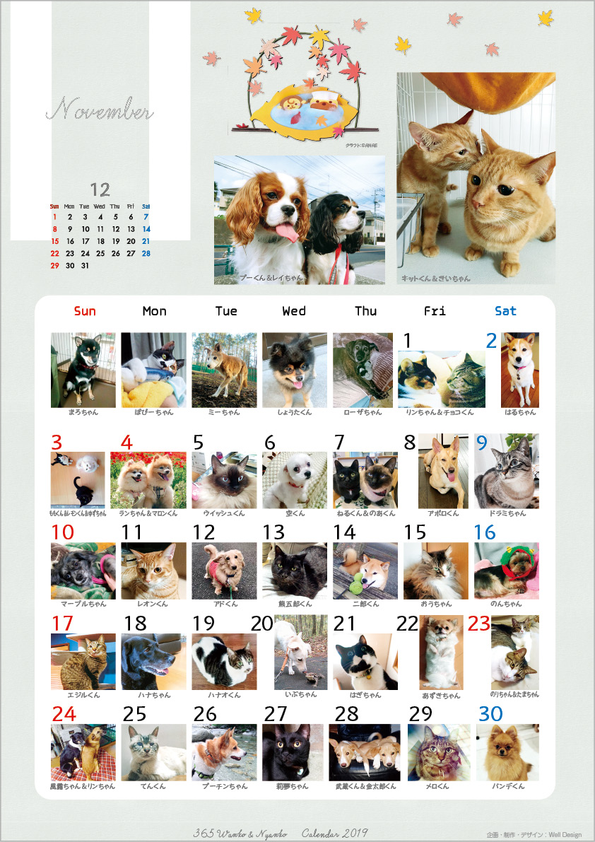 2019_365wankonyanko_calendarh-sa11.jpg