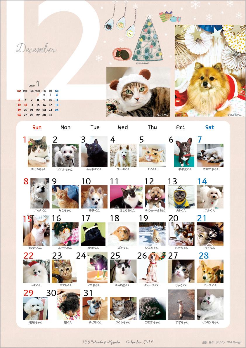 2019_365wankonyanko_calendarh-sa12.jpg