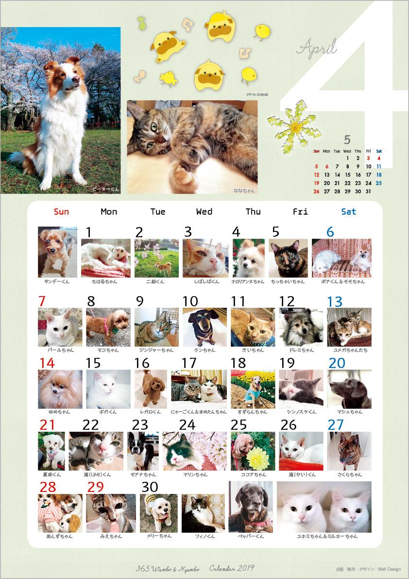 2019_365wankonyanko_calendarh-sa4.jpg